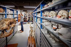 Nieuw depot collecties Utrecht