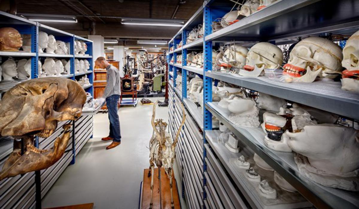 Nieuw Depot Collecties Utrecht/UDA1 bron universiteitsmuseum.JPG